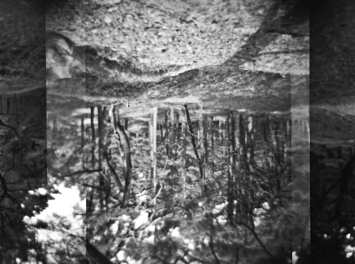 Back-To-The-Roots-©Susann-Zielinski