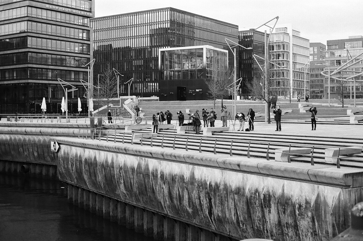 © Copyright 2012 Susann Zielinski / Lilie von Grün
